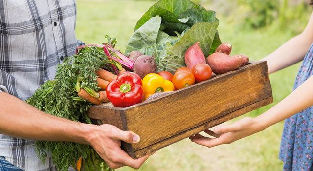 16- cagette fruits et légumes locaux 640x350_6966